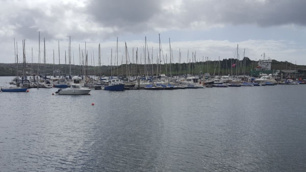 Harbor in Kinsale
